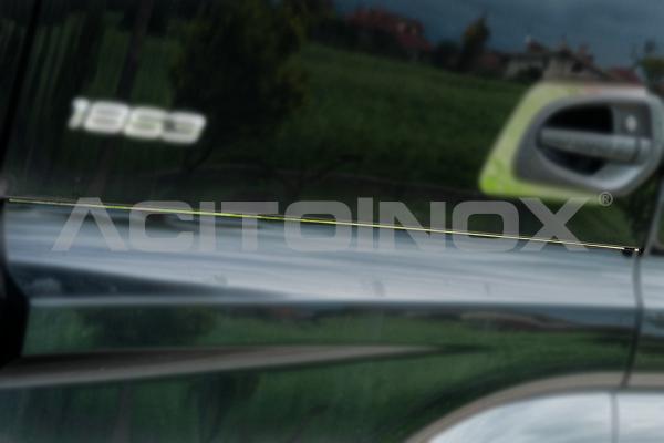 Profili sottoporta | Mercedes Actros Brutale